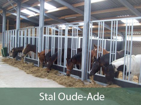 stal oude-ade