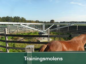 trainingsmolens